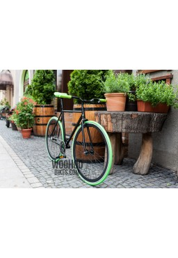 Kenda KAMPAIGN 700 x 23C Fixed Gear Tire Green